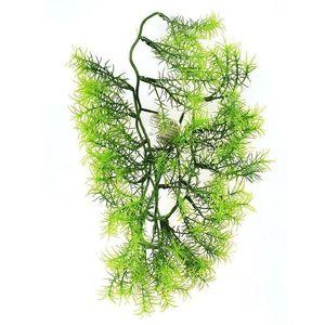 Művirág Asparagus, 40 cm kép