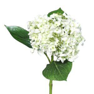 Mű hortenzia, fehér, 44 cm kép