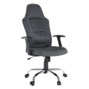 Irodai szék, szürke, VAN kép